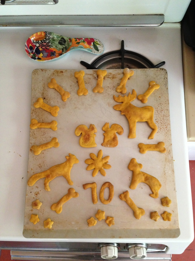 Pumpkin peanut butter dog treats.  Turns out humans like them pretty well too.